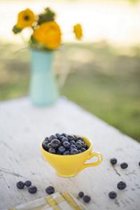 blueberries-960775_1920_muokattu